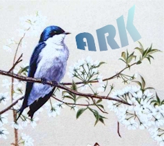 ARK Web Design * ARK Webontwerp